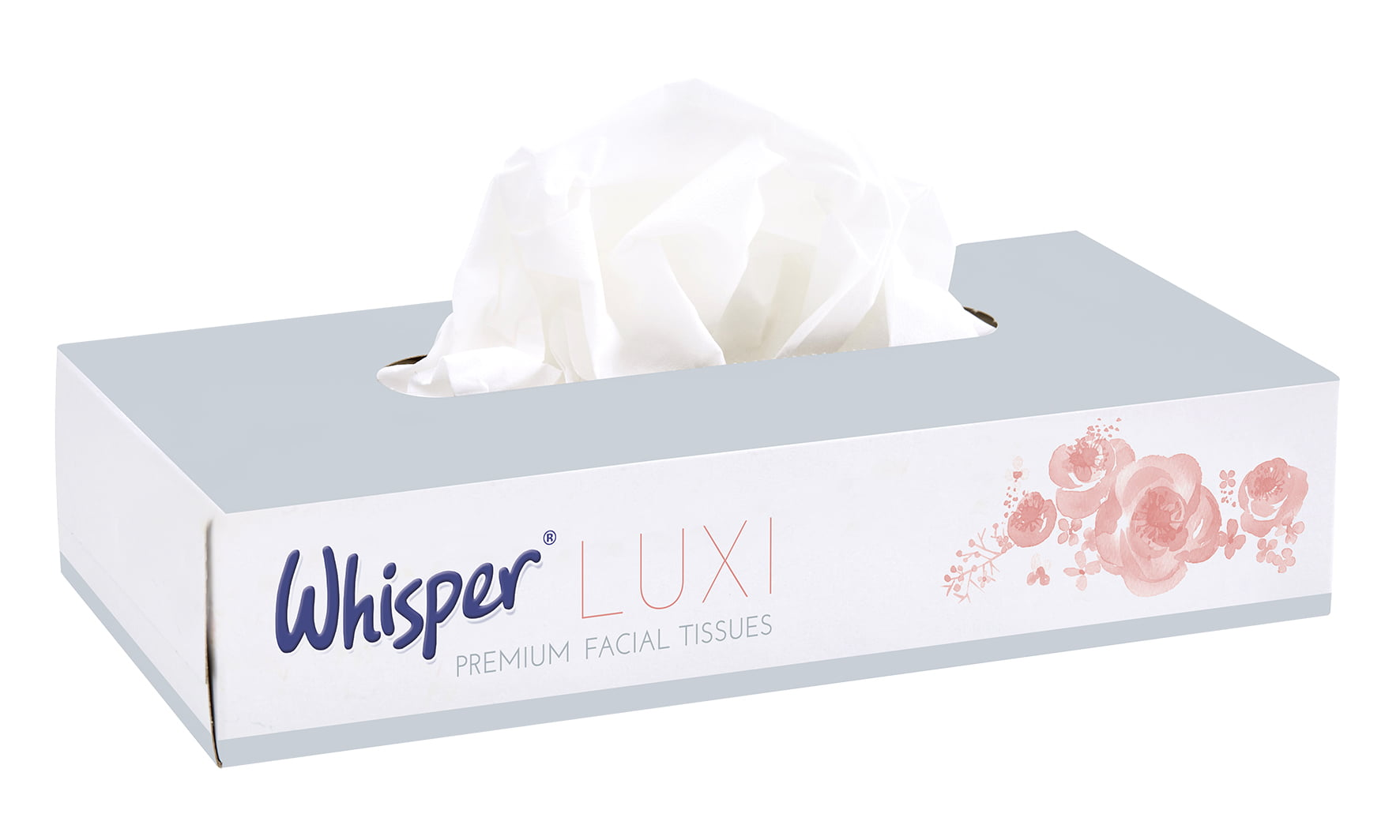 Young little facial tissue holiday doves twins